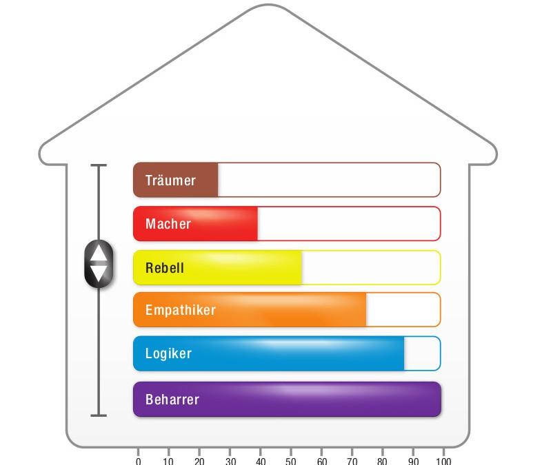 Process Communication Model® (PCM) Persönlichkeitsprofil