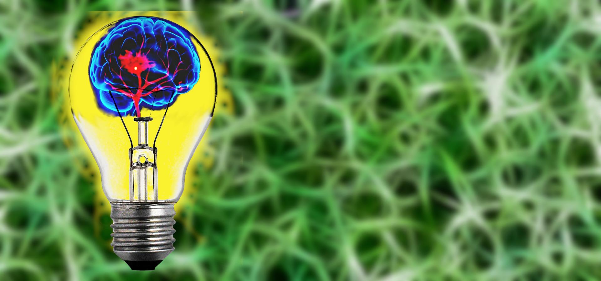 Gehirn in Glühbirne symbolisch