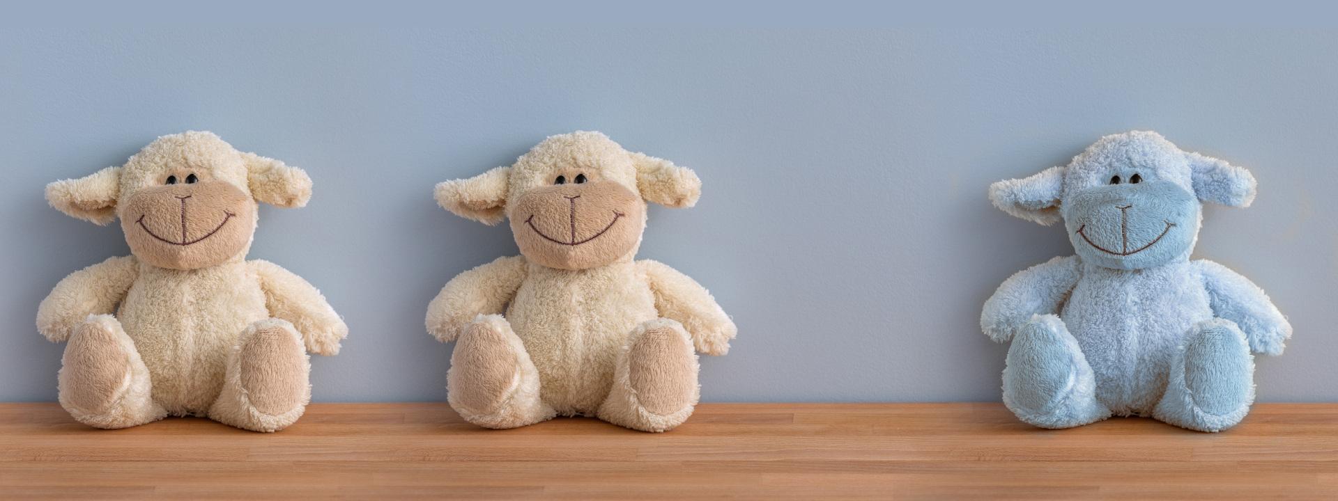 2+1 Teddys - zu Zweit und Alleinsein