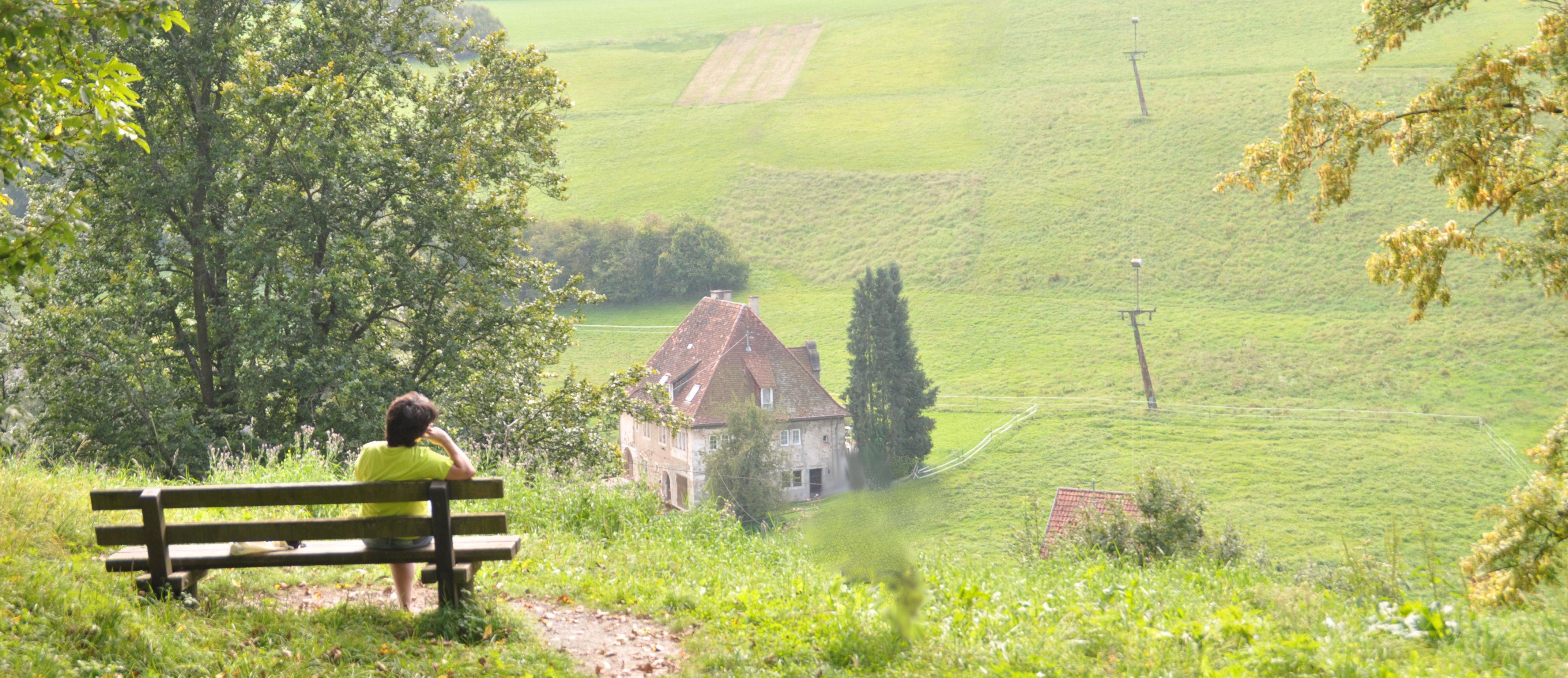 Blick Schlossberg - Siebenmühlental